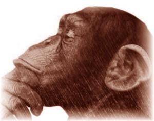 mono-pensador