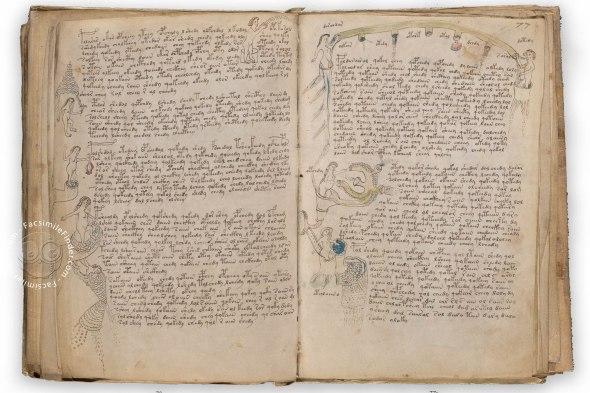 voynich-manuscript